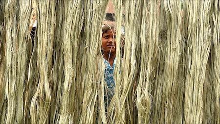day-day-cuon-rom-bangladesh