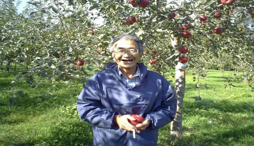 quả táo thần kỳ của Kimura chương 3